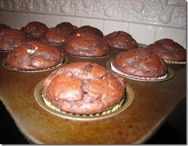 Cupcakes 019