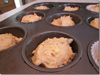 Muffins 018